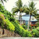 汉密尔顿岛攻略图片