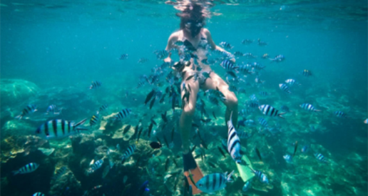 砍岛(Koh Kham)是一个私人岛屿,在沙滩上您可以尽情放松,享受一个自由的午后,也可以去海里游泳。之后我们前往谷迪岛(Koh kudee),在那里我们可以和鱼群共游。 【砍岛:宁静的世外桃源】 砍岛是一座漂亮的私人岛屿,岛上有绵延细白的沙滩、清澈见底的海水、随风摇曳的椰树,随手拍下的照片都可以当成风景明信片,仿佛置身于宁静优美的世外桃源中。你可以在沙滩上尽情放松,慵懒的度过自由舒适的午后时光,也可以去海里游泳,与大自然亲密接触。 【谷迪岛:和鱼群共游】 谷迪岛坐落于沙美岛东北,拥有大片的珊瑚礁和丰富的