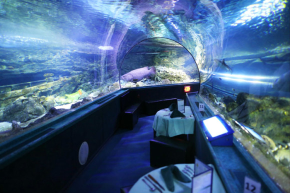 关岛海底世界水族馆,海底世界