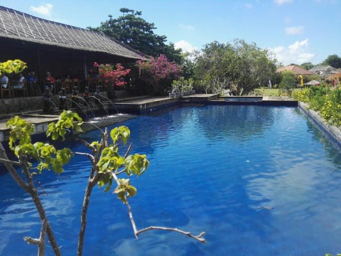 五一巴厘岛:蓝湾—海龟岛—情人崖—金巴兰沙滩;乌布皇宫—圣泉寺—乌