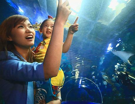 沈阳抚顺皇家海洋乐园 海洋世界 沙滩水世界 大马戏 大通票