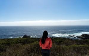 【圣迭戈图片】无问西东--美国东西海岸蜜月旅行日记