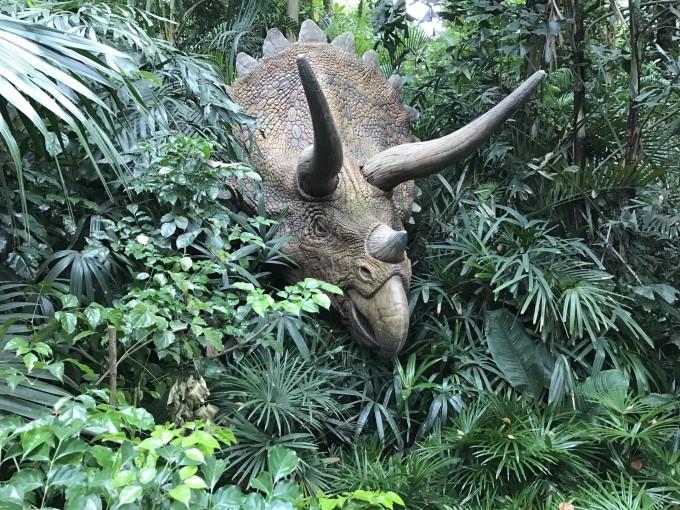 长隆野生动物园 恐龙