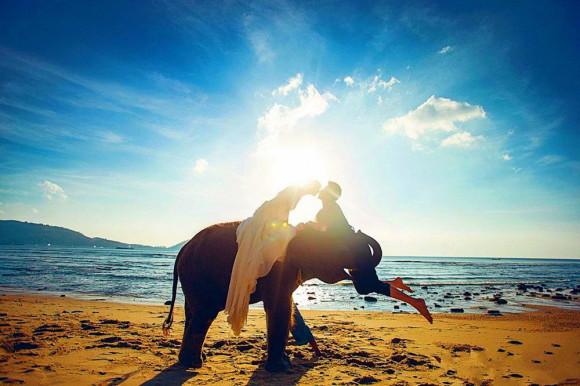 海边骑马 市区接送 (浪漫沙滩骑马 夕阳下骑马 海景骑大象 多重选择)
