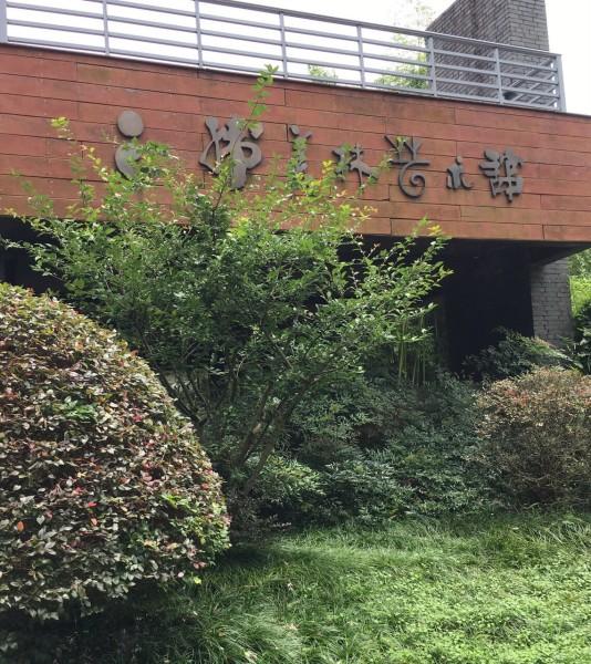 外墙竹子装饰效果图