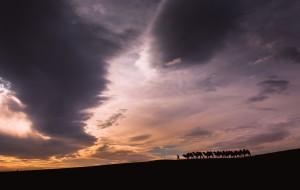 【中卫图片】【逃学旅行】至北向南,单人单骑穿越西夏。