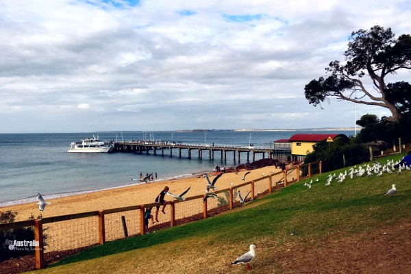 澳洲中午时间的风景图