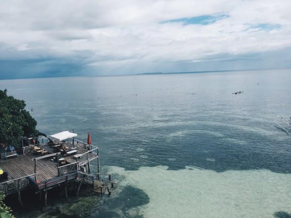 菲律宾薄荷岛潜水之旅
