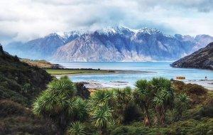 【特威泽尔图片】我花了半年的积蓄,漂洋过海地来看你,新西兰