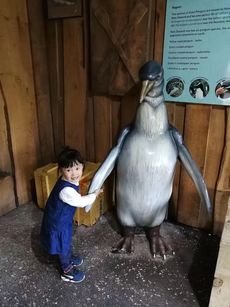 奥克兰动物园 Auckland Zoo 点评