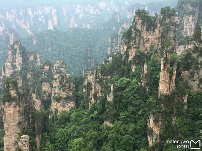 张家界大峡谷玻璃桥,张家界国家森林公园,天门山国家森林公园游记