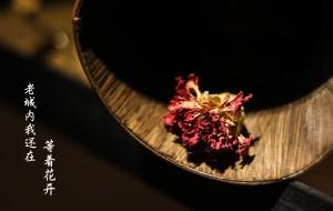 【蓝田图片】【白鹿原影视城】花还未开,她在等谁?