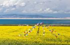 西宁塔尔寺+青海湖+茶卡盐湖+鸟岛+金沙湾+金银滩2日游(门票全含+赠旅游意外险)