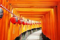 不是游记,不是攻略,大阪京都旅行需注意的小细节