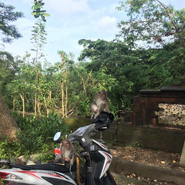 印尼| 南纬八度的巴厘岛 寻找最美的天空之