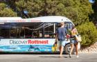 遇见网红微笑袋鼠 西澳 罗特内斯特岛 环岛巴士之旅(当地店铺提供咨询+珀斯/弗里曼特尔两地出发可选)