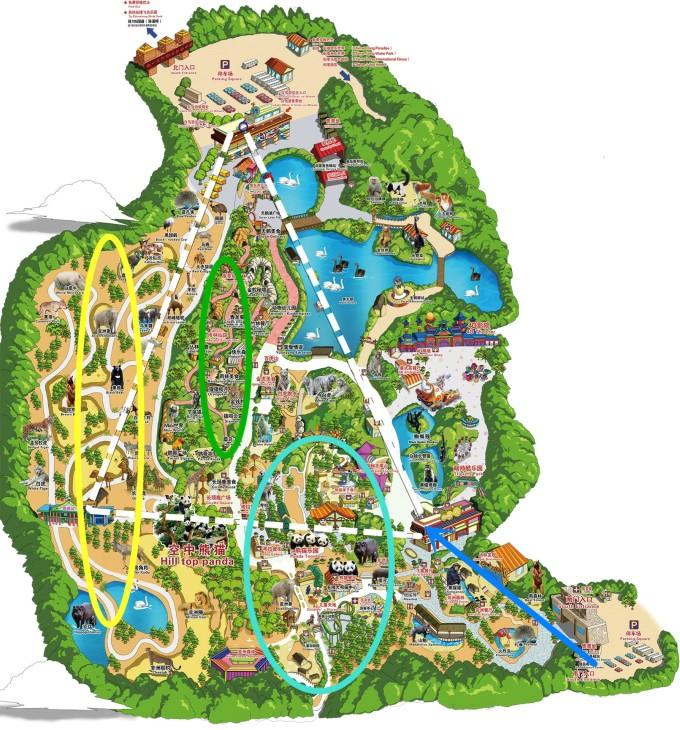 第五天:广州长隆野生动物园