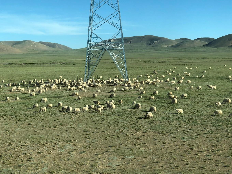 西藏--阿里,與您相伴的時光 11