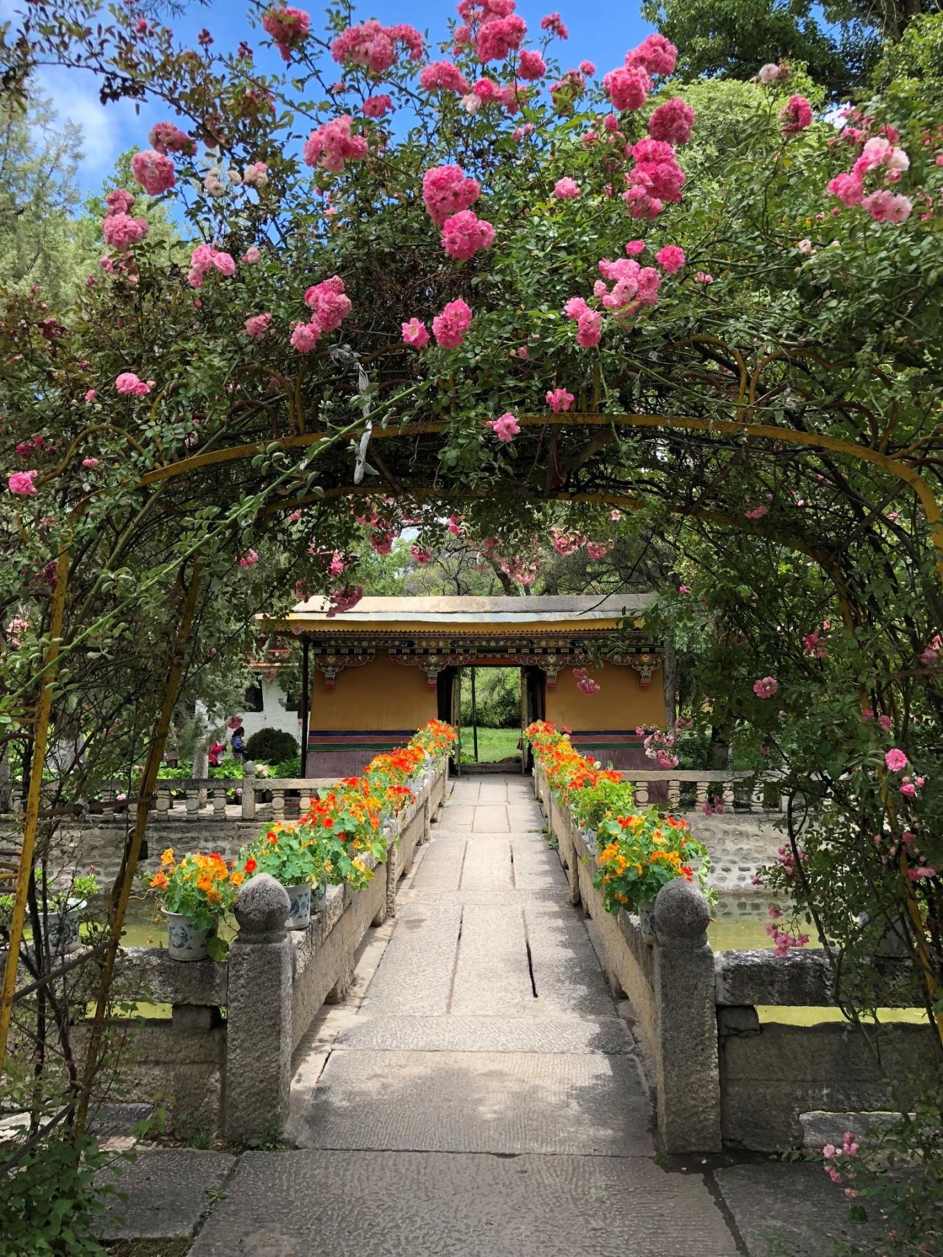西藏--阿里,與您相伴的時光 26
