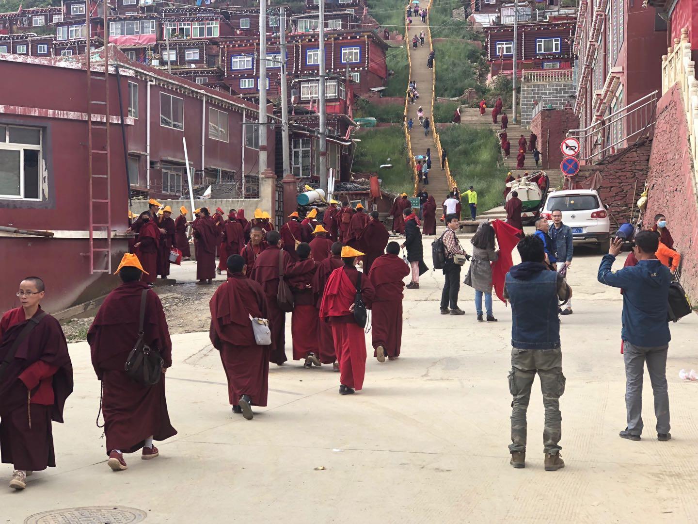 SeDa Larong Wuming's Buddhist College