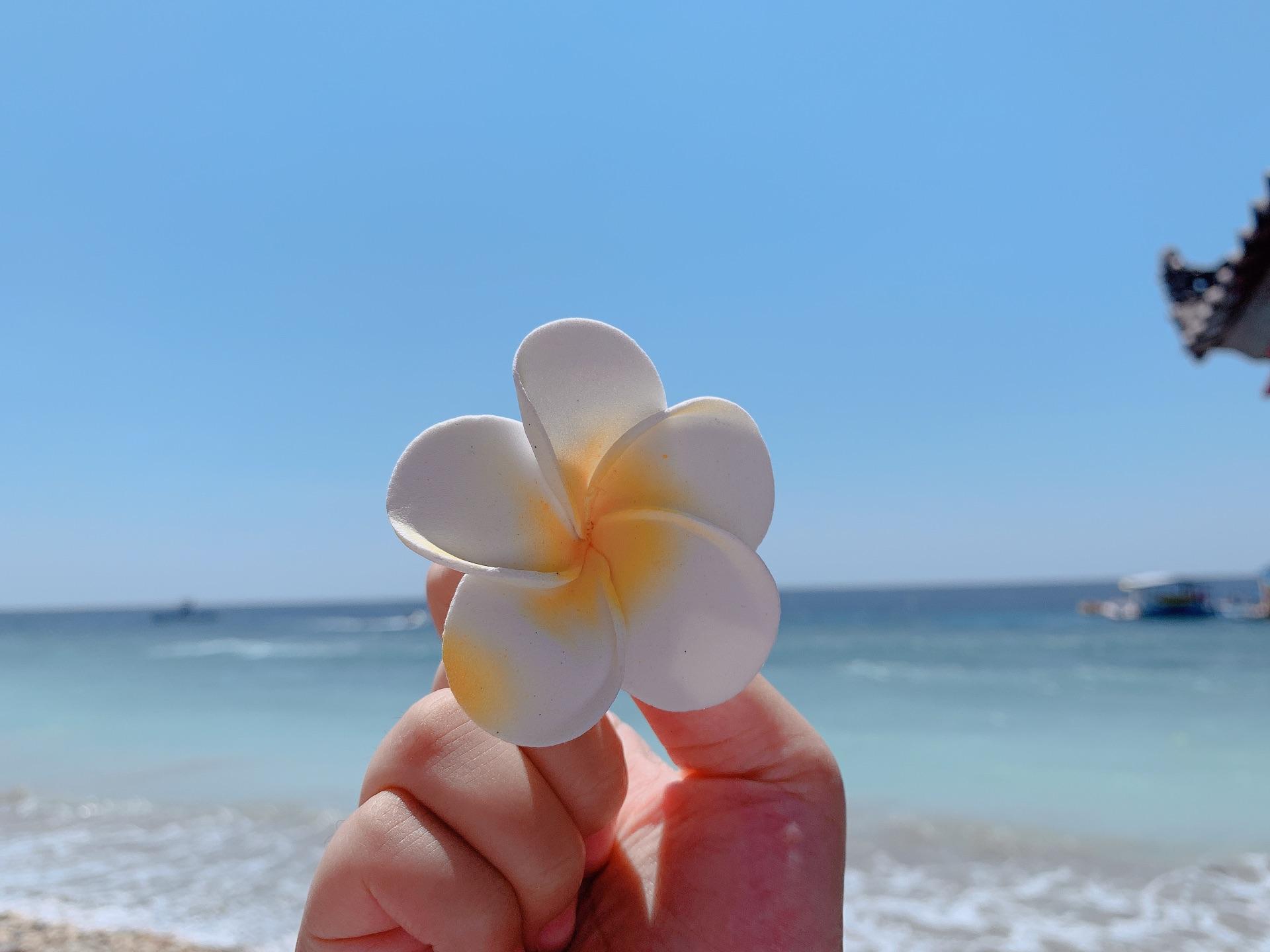 巴厘岛旅行结婚