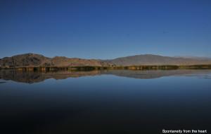 【可可托海图片】新疆行之二:水的妩媚与秀丽