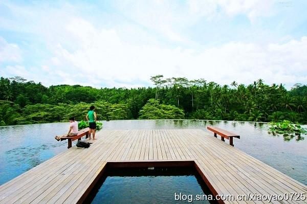 巴厘岛 游记  最特色的是它的双层无边泳池位于原始丛林之上,感觉似乎