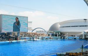 名古屋娱乐-名古屋港水族馆