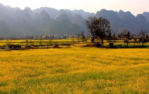 【黔西南图片】天下名山何其多,唯有此处成峰林