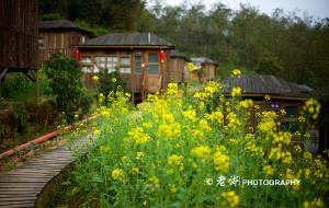 【清远图片】树屋下的风景——英德天门沟的闲暇时光