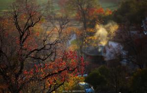 【塔川图片】深秋~游走在塔川