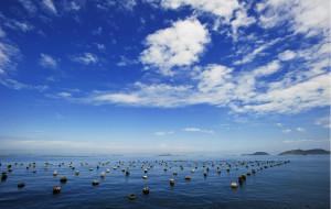 【枸杞岛图片】东海明珠:枸杞岛