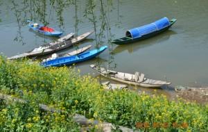 【石潭图片】春暖花开,徜徉在石潭、新安江、家朋