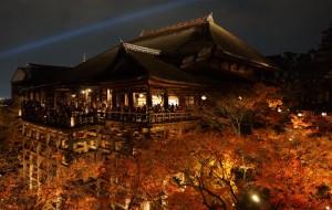 【金泽市图片】日本大阪奈良京都白川乡秋冬8日游
