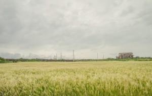 【济州岛图片】棒子国农家乐 之 AMAZING HIKING IN JEJU