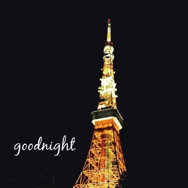 但是安排的东京铁塔看夜景还是不能放弃