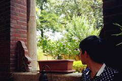 #消夏计划#【游记】独自流浪珠三角(广州,珠海,澳门,香港,厦门八日游 )已完结