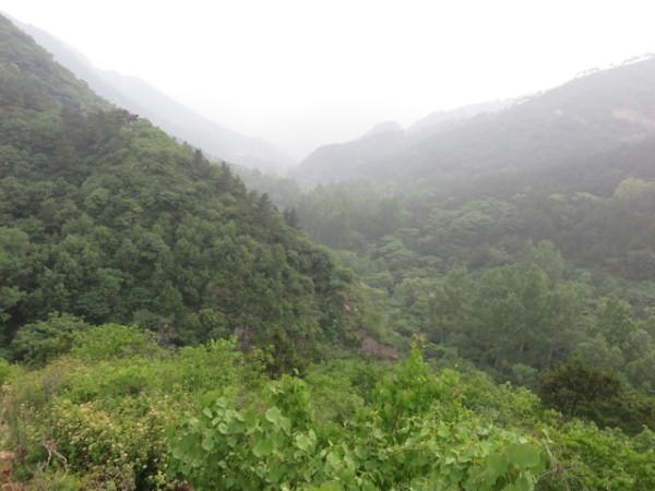 北京延庆松山森林公园
