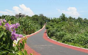 广西娱乐-彩色公路