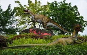 【自贡图片】自贡侏罗纪一日游