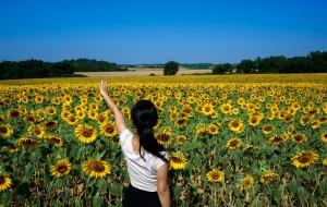 【比利时图片】在欧洲度过整个夏天——丢丢侠与桃子仙环游欧洲80天(完结)