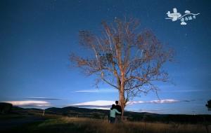 【但尼丁图片】一念浅喜  一念深爱 新西兰南岛10天8晚 探索之旅 (附营地的攻略)
