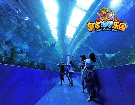 沈阳抚顺皇家海洋乐园 海洋套票 海洋世界 动物世界 极地世界