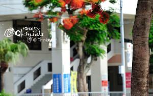 【冲绳图片】★我们的六一,遨游在两岸三地---- 带上宝宝看世界之日本冲绳