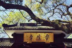 杭州三日漫游记----西湖美景,三月天呐