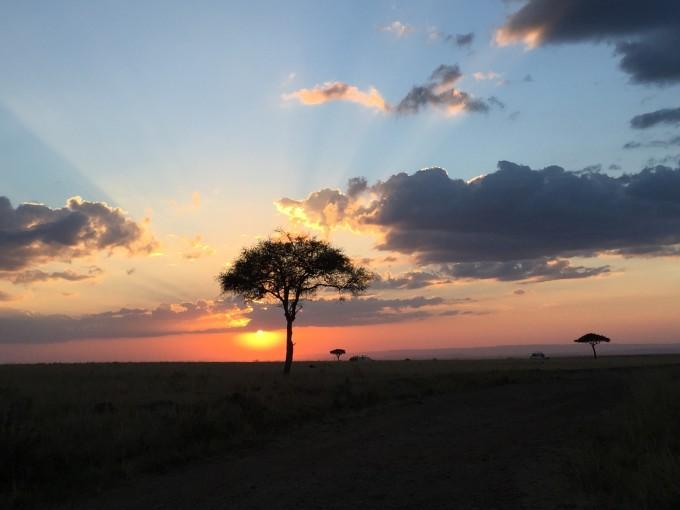 肯尼亚的动物家园