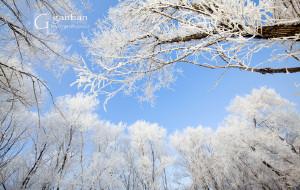 【吉林市图片】雾凇——这一季,爱上你