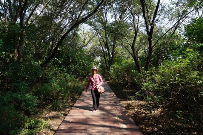 南面的鸽子窝公园,海滨浴场, 碧螺塔,老虎石公园等.
