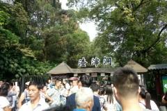 重庆一日游