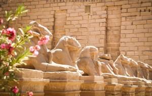 【亚历山大图片】走呀,一起去埃及坐热气球,看弯曲的尼罗河,撒哈拉大沙漠,湛蓝的地中海!